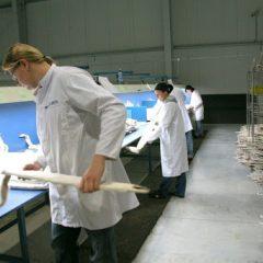 Работа на предприятие по обработке меха